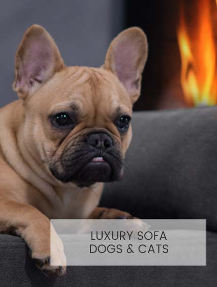 Luxury pet sofa Giusypop